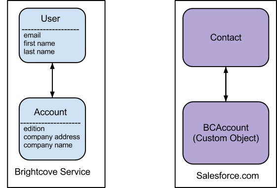 Using the Salesforce Bulk API and Apex Code | Brightcove
