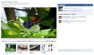 Facebook_livestreambox
