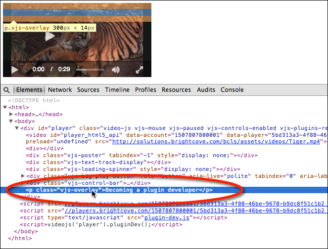 Adding a Video Player Plugin Code