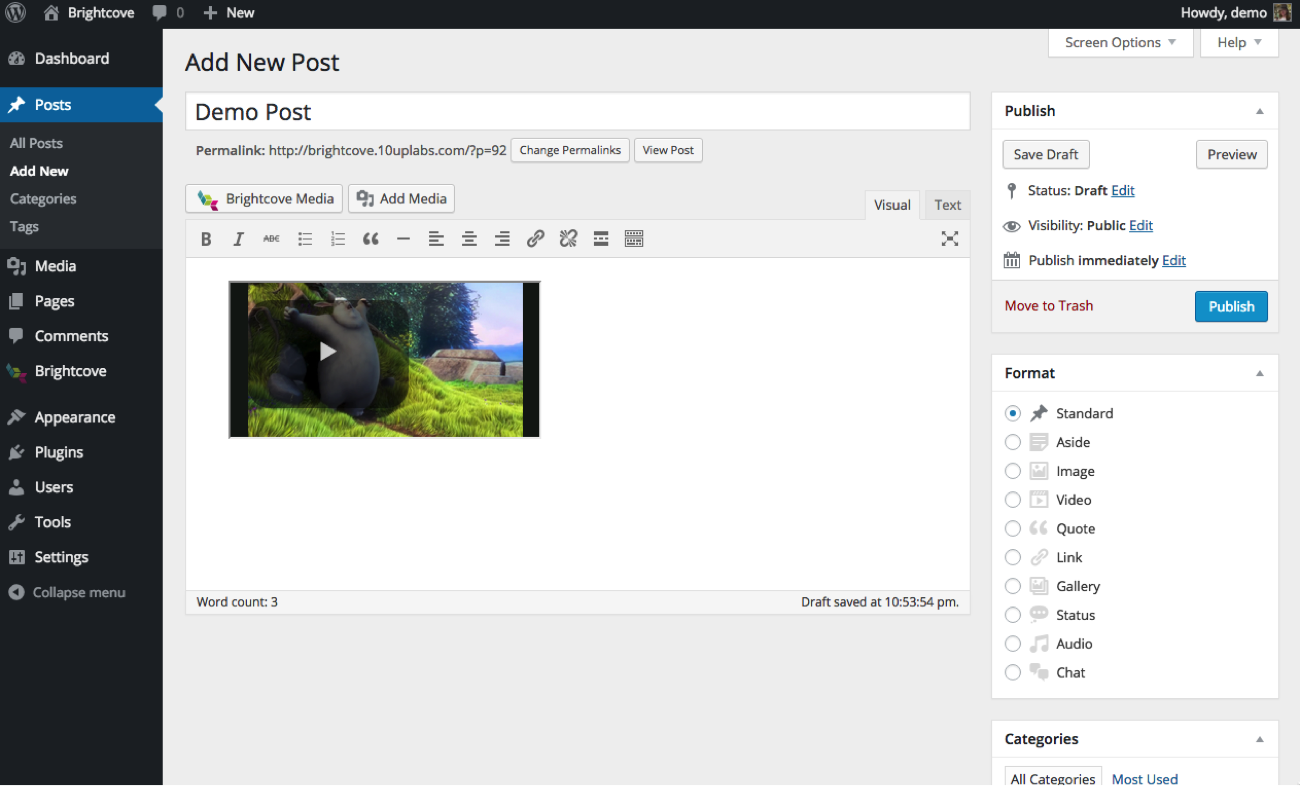 New Wordpress Post with Video