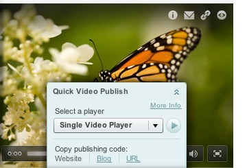 Quick and easy video player publishing