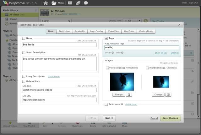 Content Management Screenshot 3