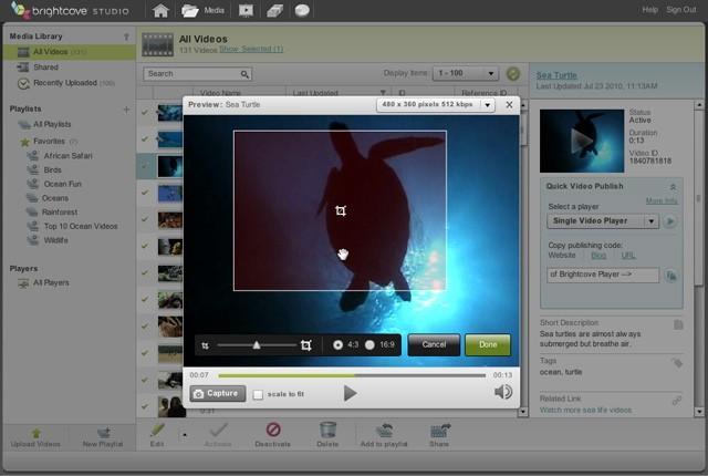 Content Management Screenshot 5