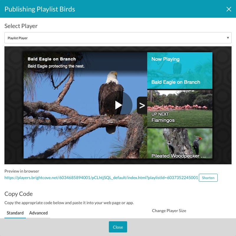 Video Cloud Basics: Publishing a Playlist to the Web