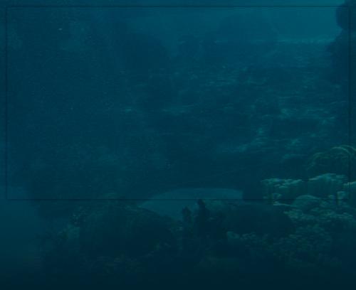 Image d'arrière-plan aquatique